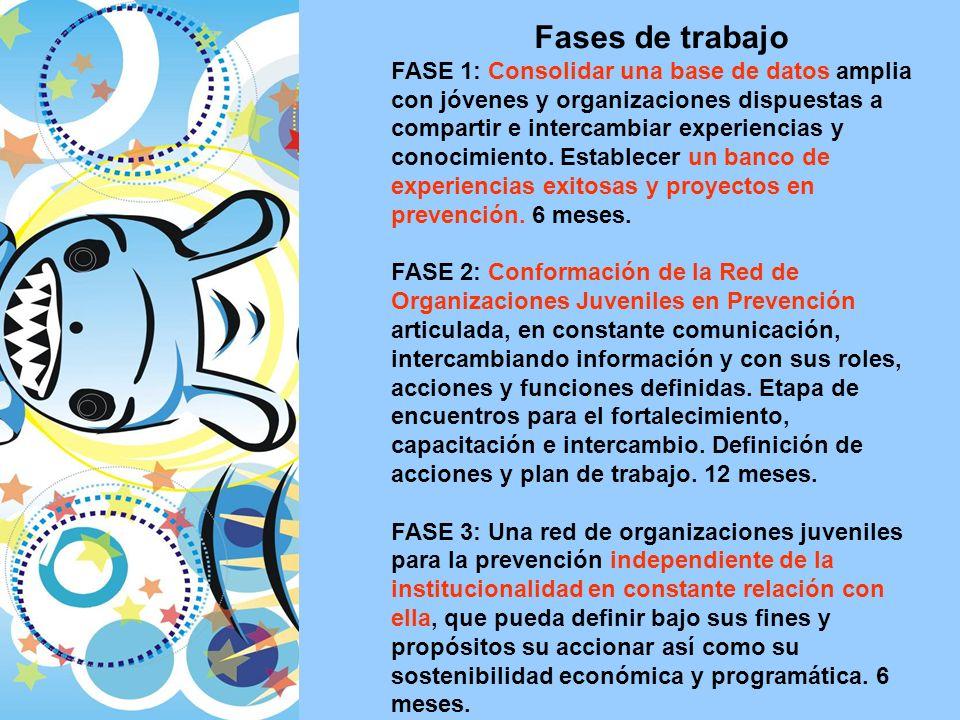 Fases de trabajo FASE 1: Consolidar una base de datos amplia con jóvenes y organizaciones dispuestas a compartir e intercambiar experiencias y conocimiento.