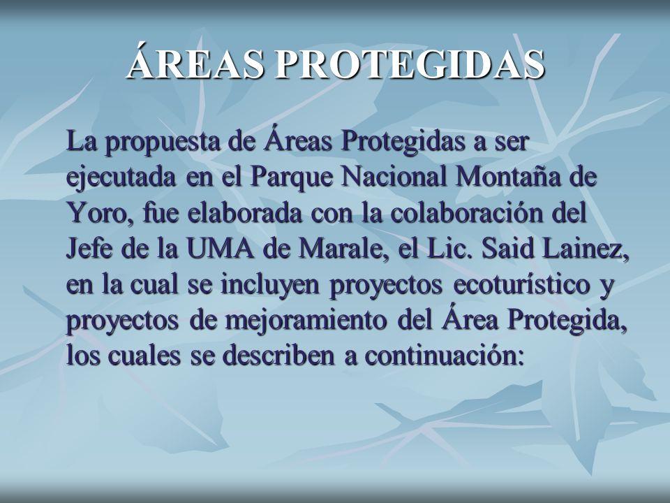 ÁREAS PROTEGIDAS La propuesta de Áreas Protegidas a ser ejecutada en el Parque Nacional Montaña de Yoro, fue elaborada con la colaboración del Jefe de