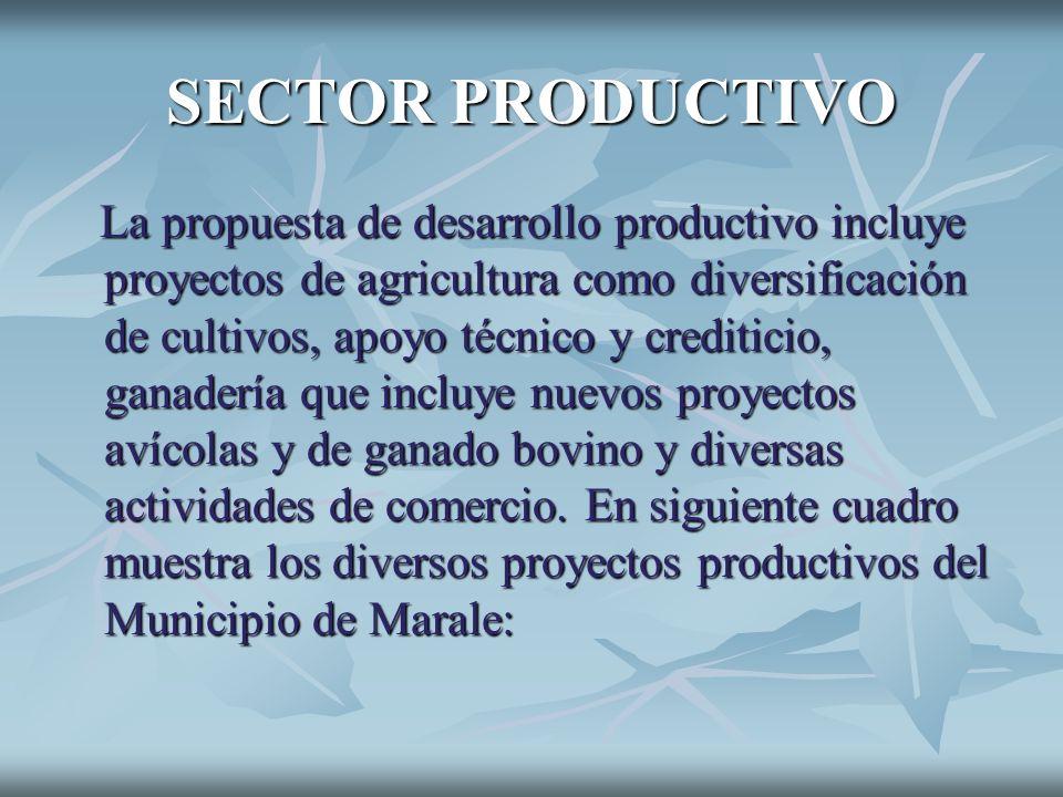 SECTOR PRODUCTIVO La propuesta de desarrollo productivo incluye proyectos de agricultura como diversificación de cultivos, apoyo técnico y crediticio,