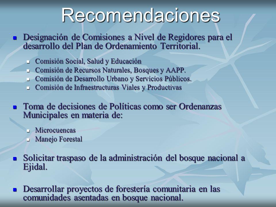 Recomendaciones Designación de Comisiones a Nivel de Regidores para el desarrollo del Plan de Ordenamiento Territorial. Designación de Comisiones a Ni