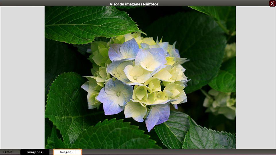 Vem. 9 ImágenesImagen 6 Visor de imágenes Niñfotos