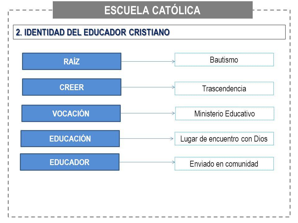 ESCUELA CATÓLICA 2. IDENTIDAD DEL EDUCADOR CRISTIANO RAÍZ CREER VOCACIÓN EDUCACIÓN EDUCADOR Bautismo Trascendencia Ministerio Educativo Lugar de encue