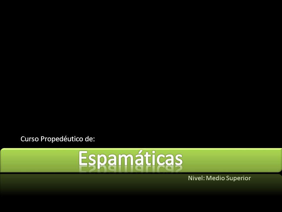 ESPAMÁTICAS VER. 0