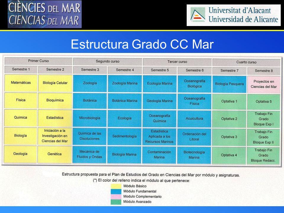 Estructura Grado CC Mar