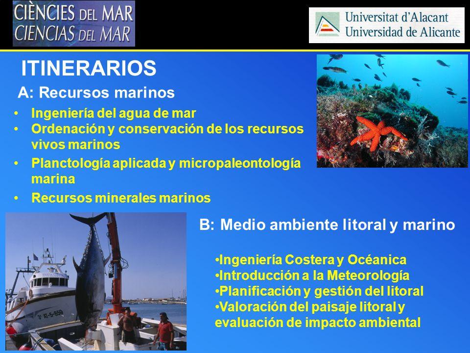 ITINERARIOS A: Recursos marinos B: Medio ambiente litoral y marino Ingeniería Costera y Océanica Introducción a la Meteorología Planificación y gestió