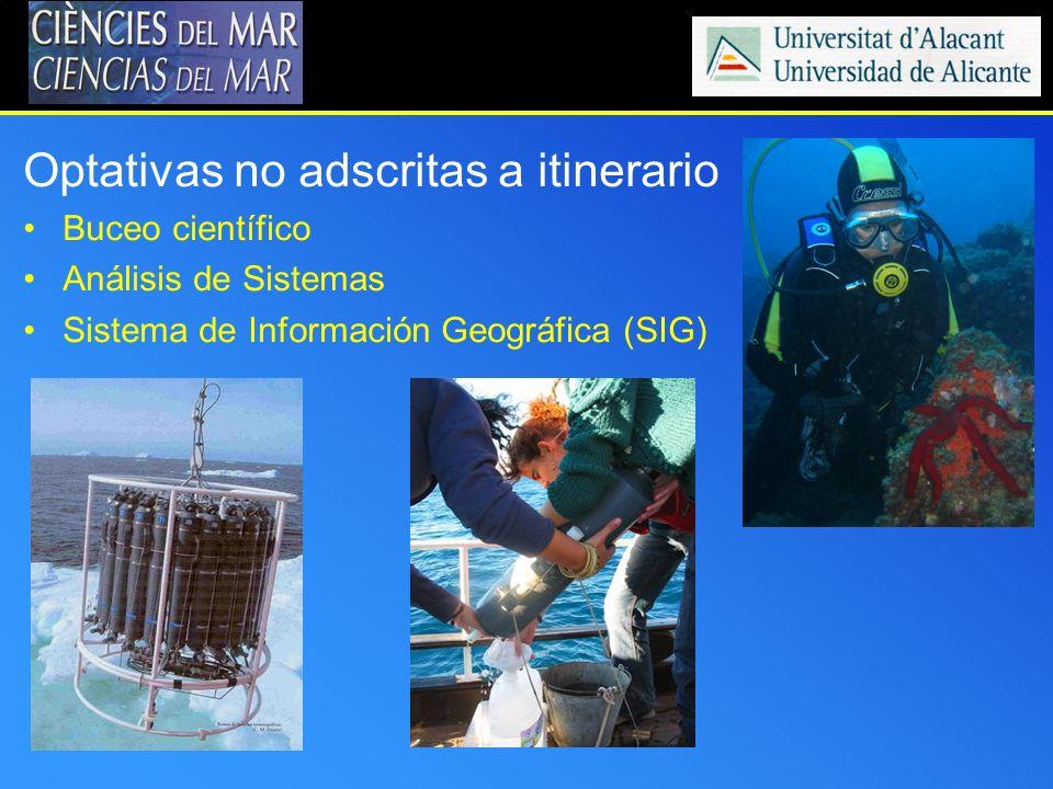 Optativas no adscritas a itinerario Buceo científico Análisis de Sistemas Sistema de Información Geográfica (SIG)
