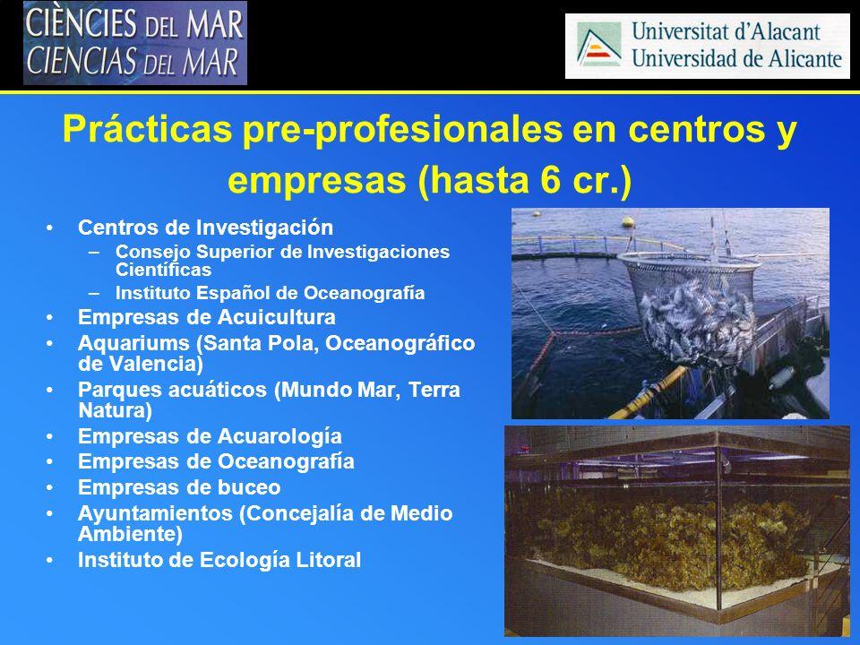 Prácticas pre-profesionales en centros y empresas (hasta 6 cr.) Centros de Investigación –Consejo Superior de Investigaciones Científicas –Instituto E