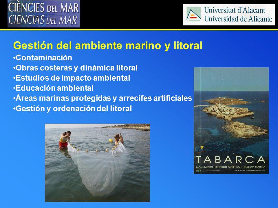 Gestión del ambiente marino y litoral Contaminación Obras costeras y dinámica litoral Estudios de impacto ambiental Educación ambiental Áreas marinas