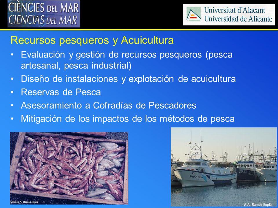 Recursos pesqueros y Acuicultura Evaluación y gestión de recursos pesqueros (pesca artesanal, pesca industrial) Diseño de instalaciones y explotación