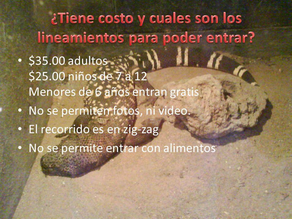 El horario del herpertario es: – Martes a Domingo de 9:00 a 16:30 horas Su ubicación es y número telefónico son: – 1a Sección del Bosque de Chapultepec Col.