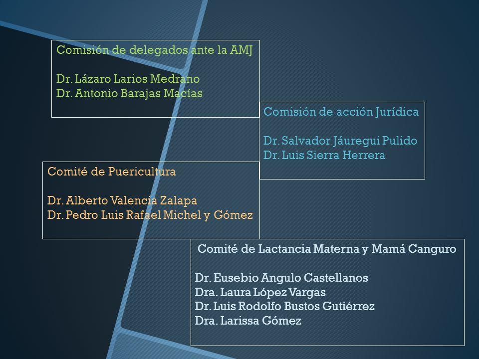 Comisión de delegados ante la AMJ Dr. Lázaro Larios Medrano Dr. Antonio Barajas Macías Comisión de acción Jurídica Dr. Salvador Jáuregui Pulido Dr. Lu