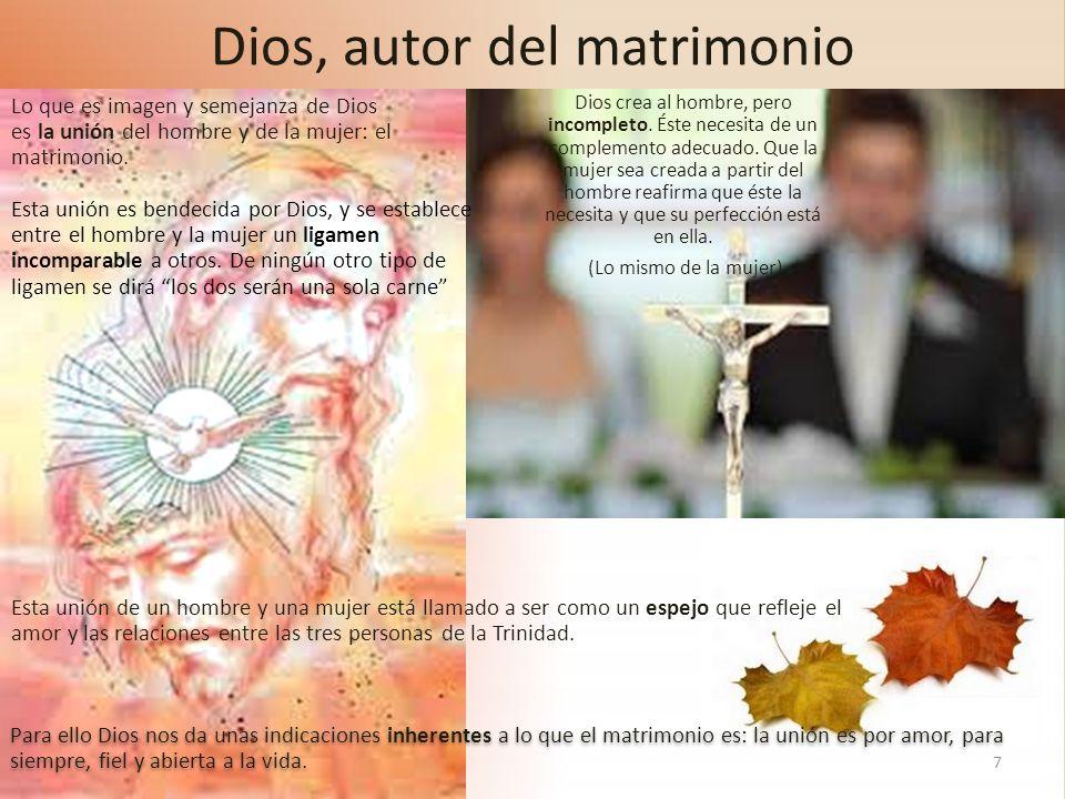 7 Dios, autor del matrimonio Dios crea al hombre, pero incompleto. Éste necesita de un complemento adecuado. Que la mujer sea creada a partir del homb