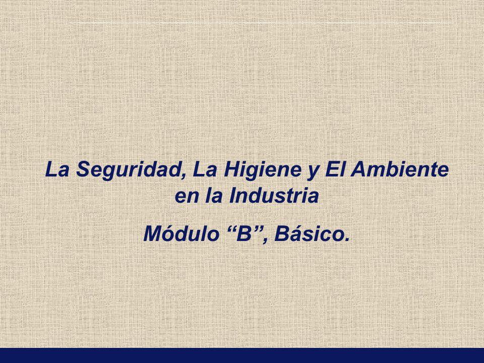 La Seguridad, La Higiene y El Ambiente en la Industria Módulo B, Básico.