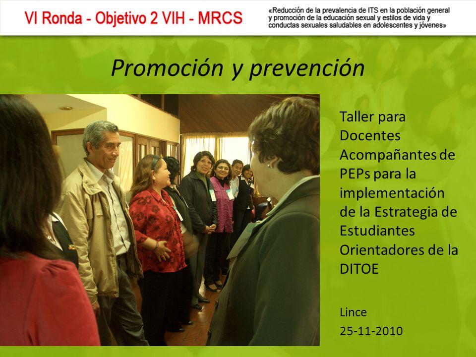 Promoción y prevención Taller para Docentes Acompañantes de PEPs para la implementación de la Estrategia de Estudiantes Orientadores de la DITOE Lince 25-11-2010