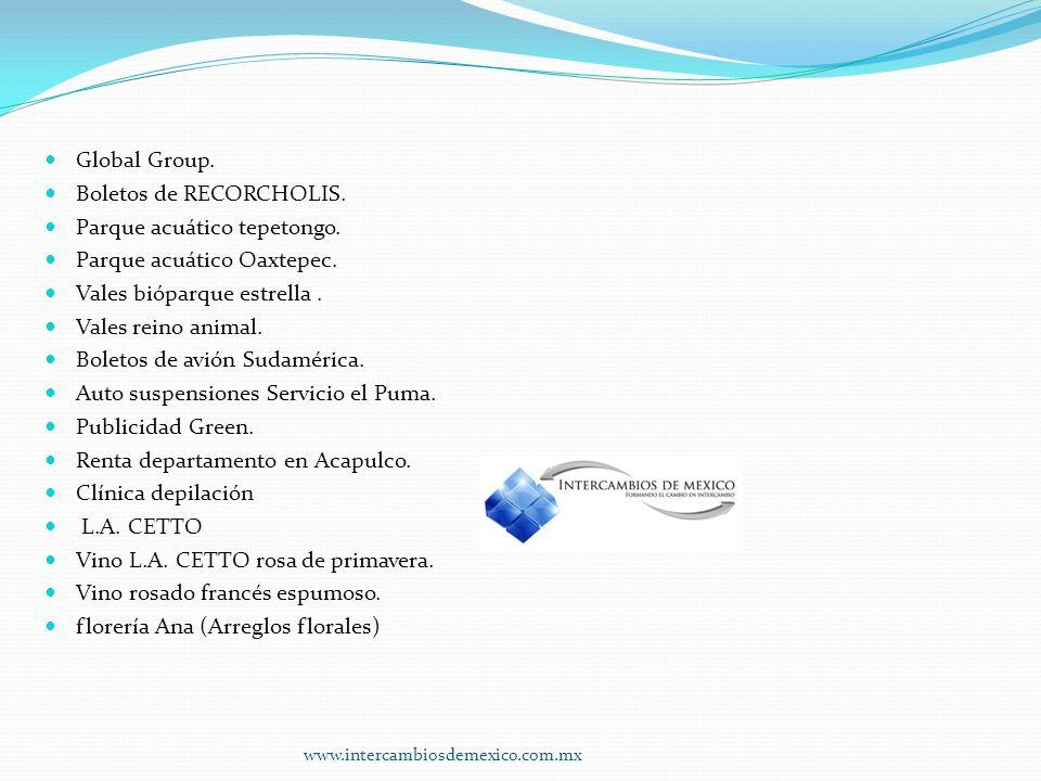Global Group.Boletos de RECORCHOLIS. Parque acuático tepetongo.