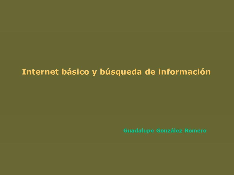 Internet básico y búsqueda de información Guadalupe González Romero