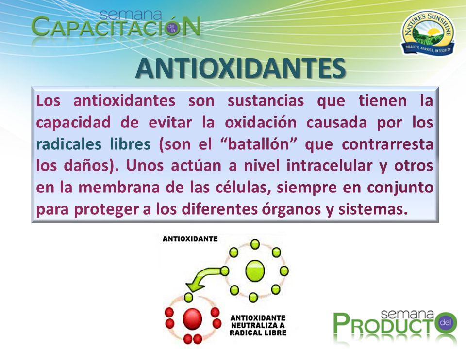 ANTIOXIDANTES La producción de antioxidantes naturales y los antioxidantes que se obtienen con la alimentación, no es suficiente para muchas personas.