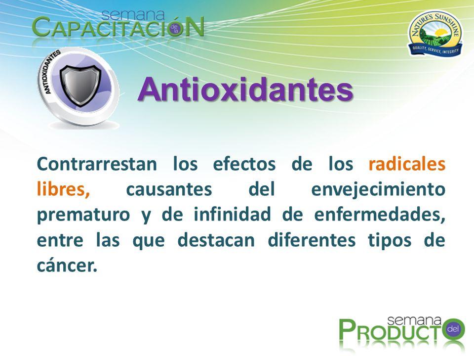 Los productos antioxidantes aportan, de manera natural, las defensas necesarias para combatir a los radicales libres, los cuales entran al cuerpo por medio de la respiración o al ingerir alimentos.