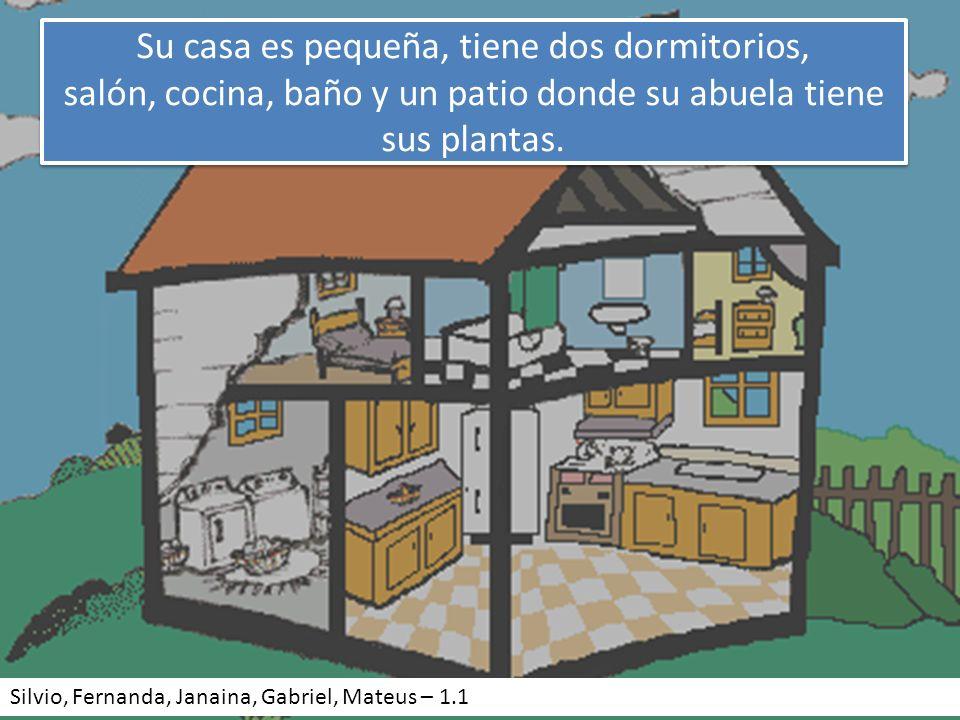 Su casa es pequeña, tiene dos dormitorios, salón, cocina, baño y un patio donde su abuela tiene sus plantas.