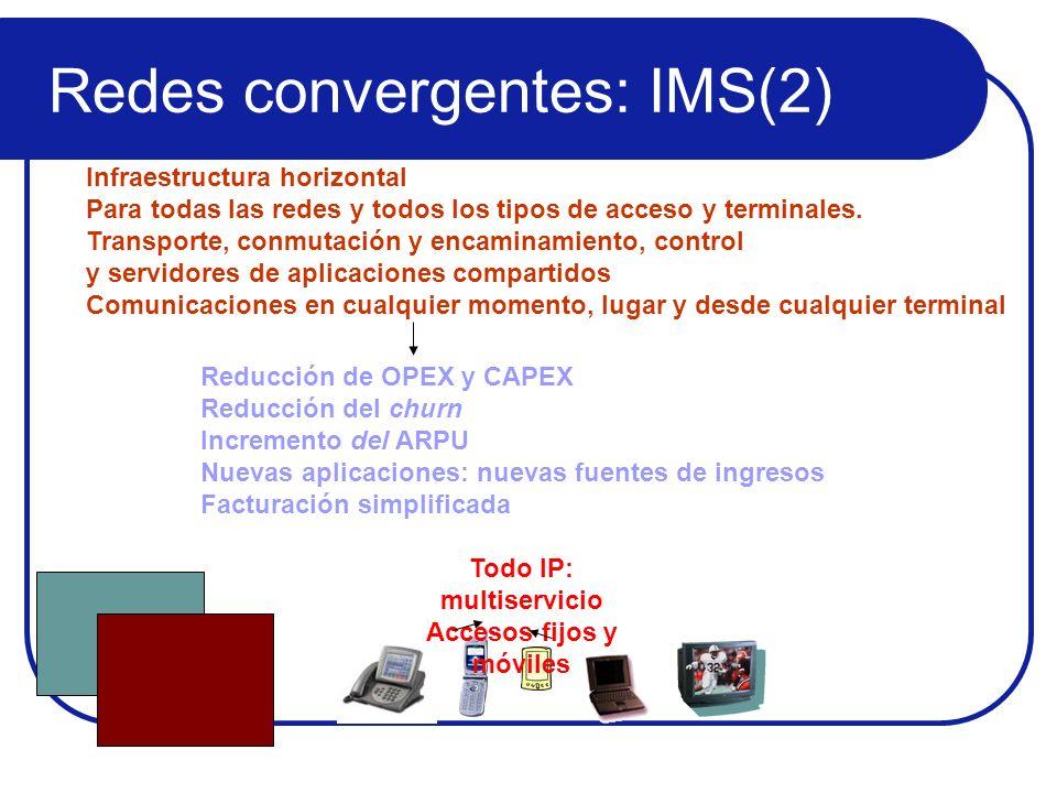 Todo IP: multiservicio Accesos fijos y móviles Infraestructura horizontal Para todas las redes y todos los tipos de acceso y terminales. Transporte, c