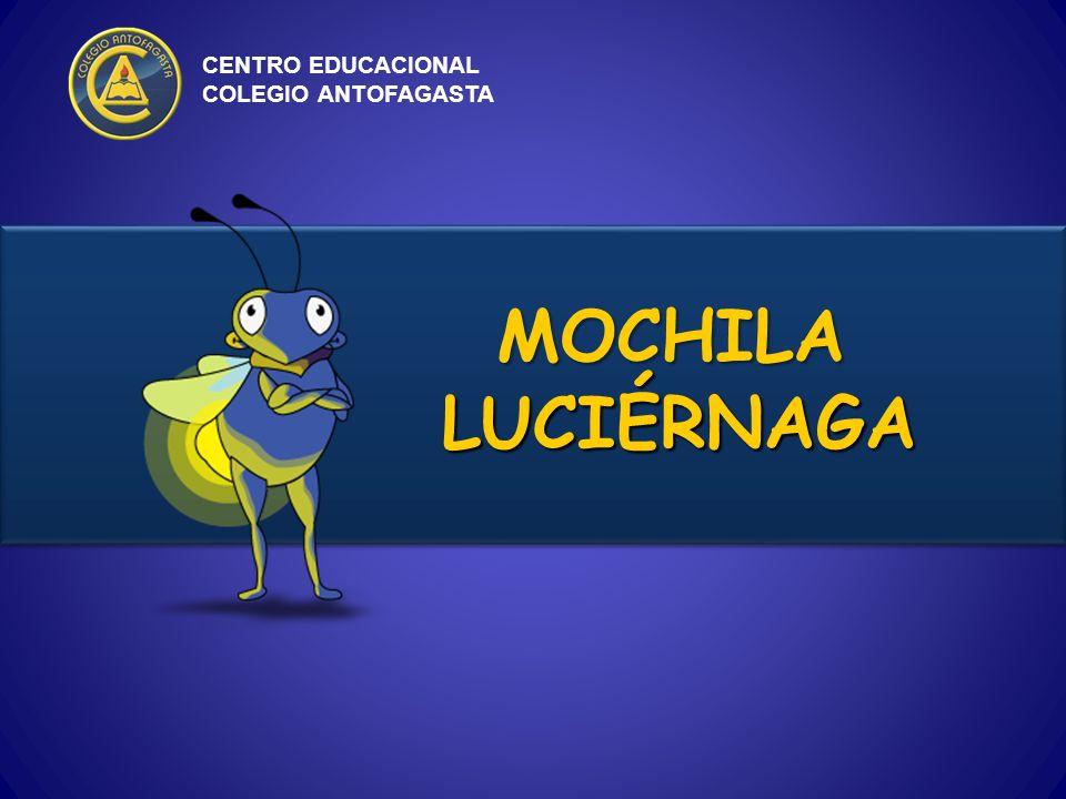 Este proyecto fue diseñado para ser implementado en los Colegios, en los niveles de Educación Parvularia y Educación Básica.