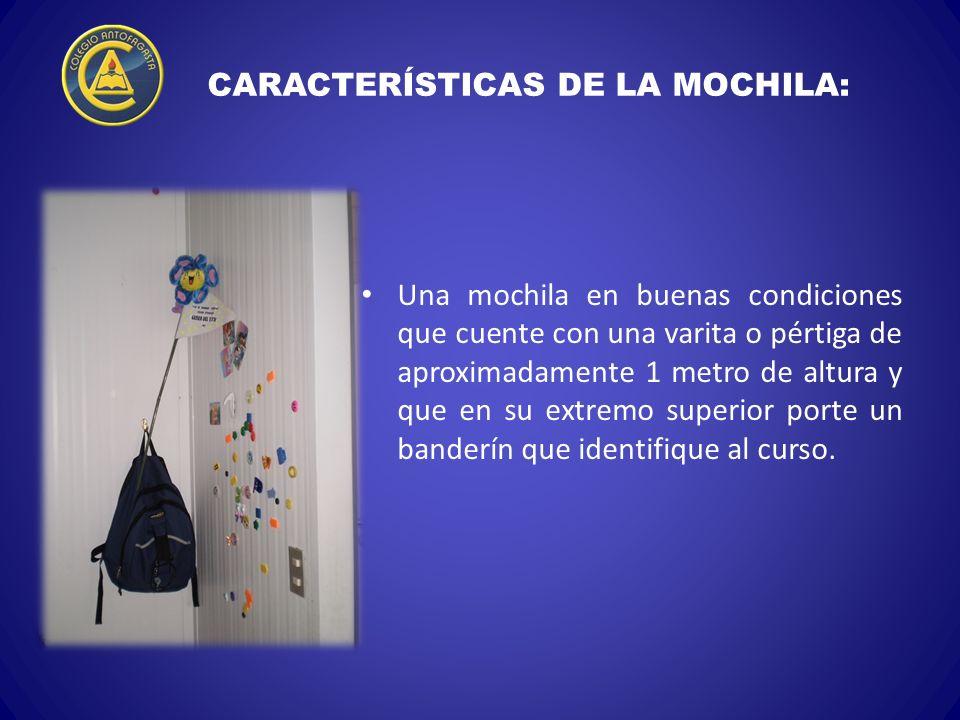 CARACTERÍSTICAS DE LA MOCHILA: Una mochila en buenas condiciones que cuente con una varita o pértiga de aproximadamente 1 metro de altura y que en su