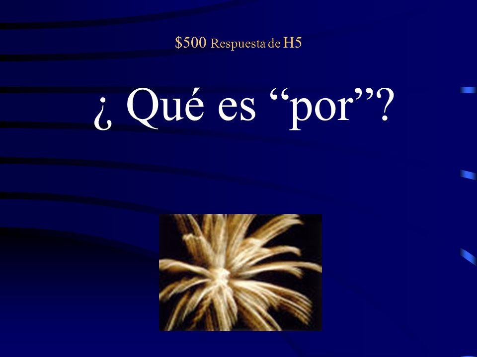 $500 pregunta de H5 Sacaron una A+ en el examen final ______ estudiar mucho. (because)