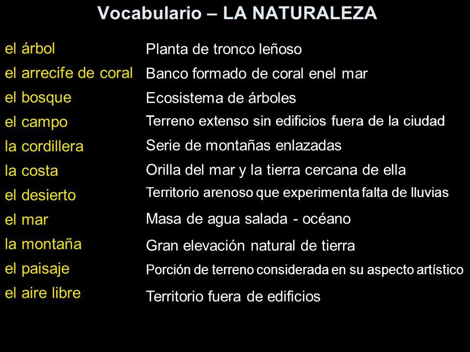 Vocabulario – LA NATURALEZA el árbol el arrecife de coral el bosque el campo la cordillera la costa el desierto el mar la montaña el paisaje el aire l