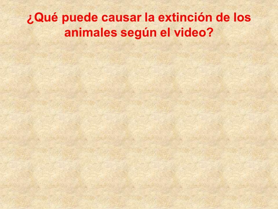 ¿Qué puede causar la extinción de los animales según el video?