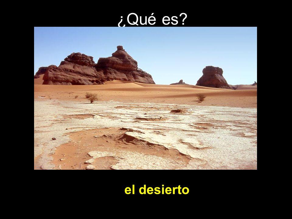 ¿Qué es? el desierto