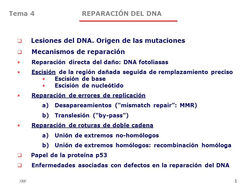 NRH 1 REPARACIÓN DEL DNATema 4 Lesiones del DNA. Origen de las mutaciones Mecanismos de reparación Reparación directa del daño: DNA fotoliasas Escisió