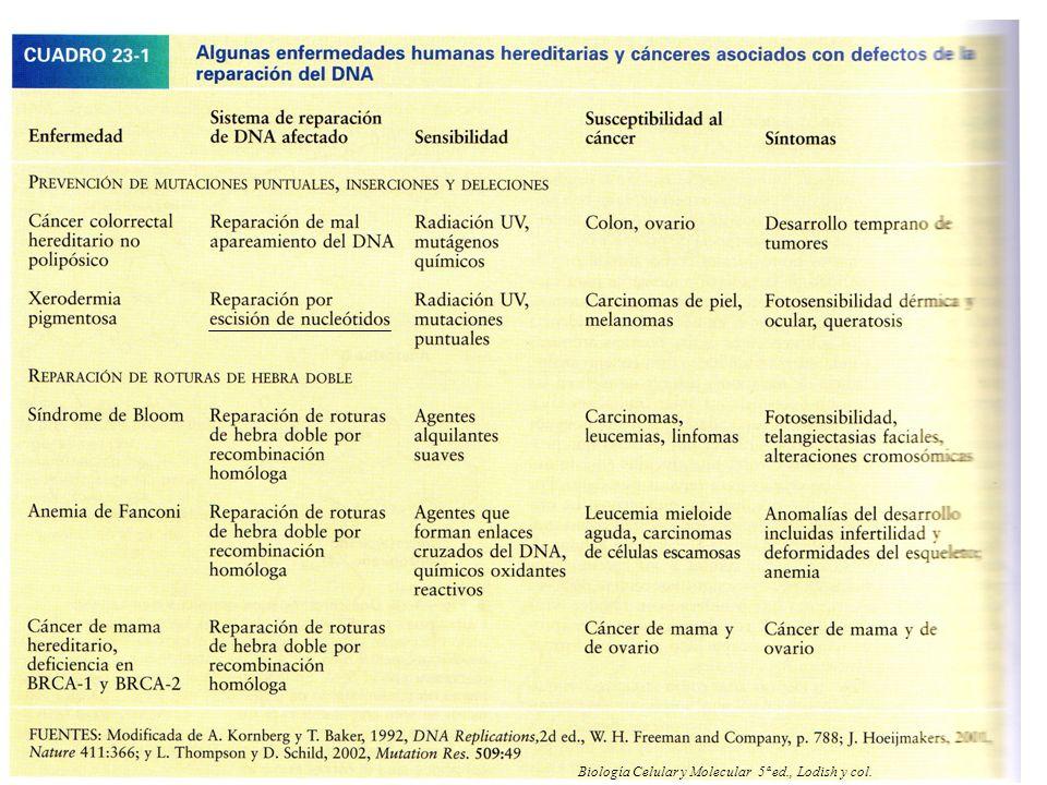 NRH 42 Biología Celular y Molecular 5ª ed., Lodish y col.