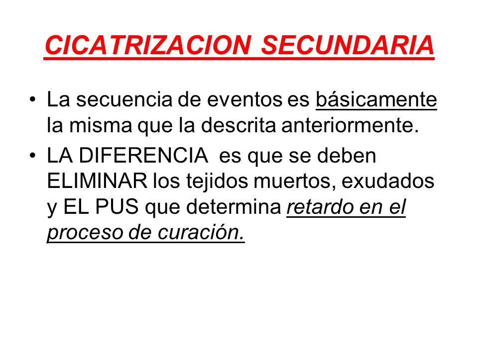 CICATRIZACION SECUNDARIA La secuencia de eventos es básicamente la misma que la descrita anteriormente. LA DIFERENCIA es que se deben ELIMINAR los tej