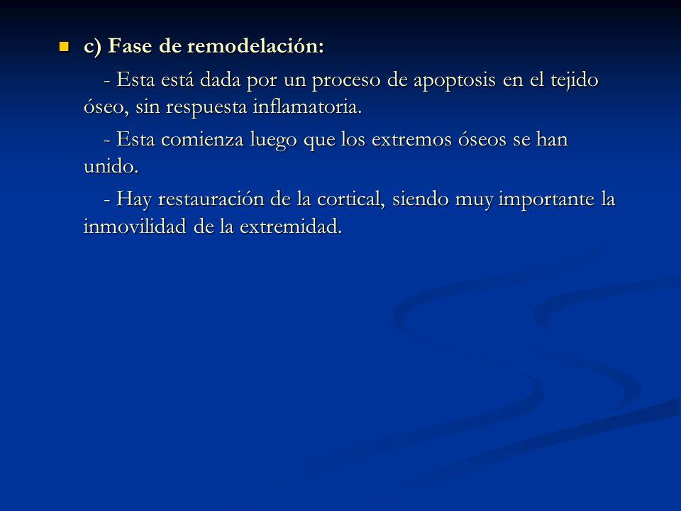 c) Fase de remodelación: c) Fase de remodelación: - Esta está dada por un proceso de apoptosis en el tejido óseo, sin respuesta inflamatoria.