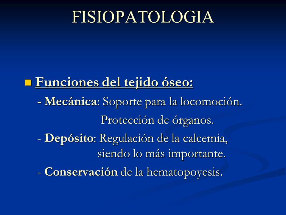FISIOPATOLOGIA Composición ósea: Composición ósea: - Fase mineral: 2/3, formado por calcio en forma de Hidroxiapatita.