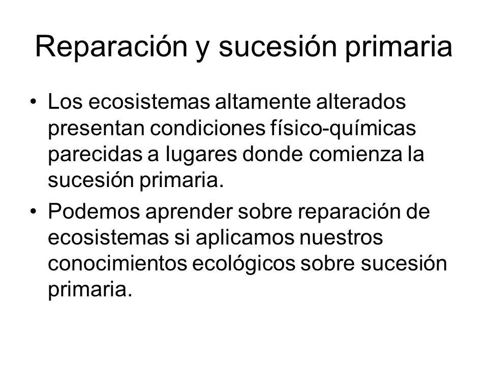 Reparación y sucesión primaria Los ecosistemas altamente alterados presentan condiciones físico-químicas parecidas a lugares donde comienza la sucesió