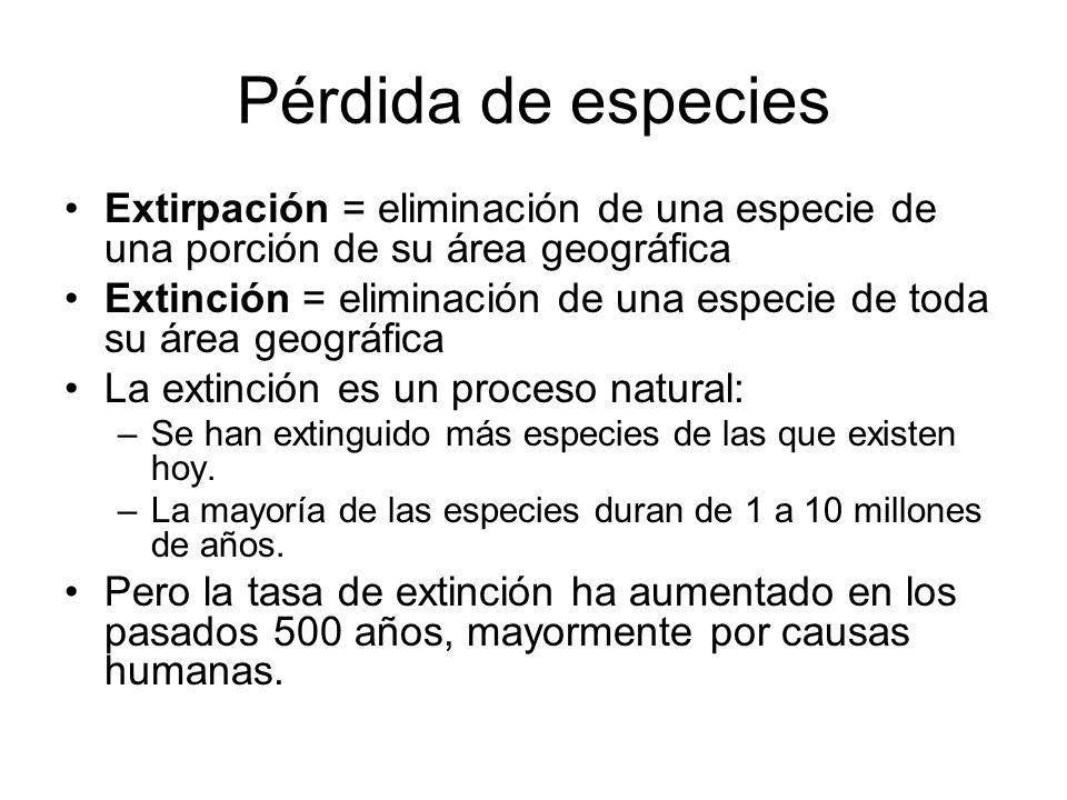Pérdida de especies Extirpación = eliminación de una especie de una porción de su área geográfica Extinción = eliminación de una especie de toda su ár