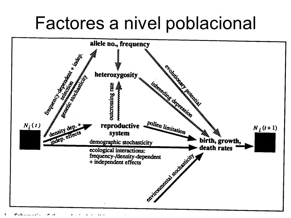 Factores a nivel poblacional