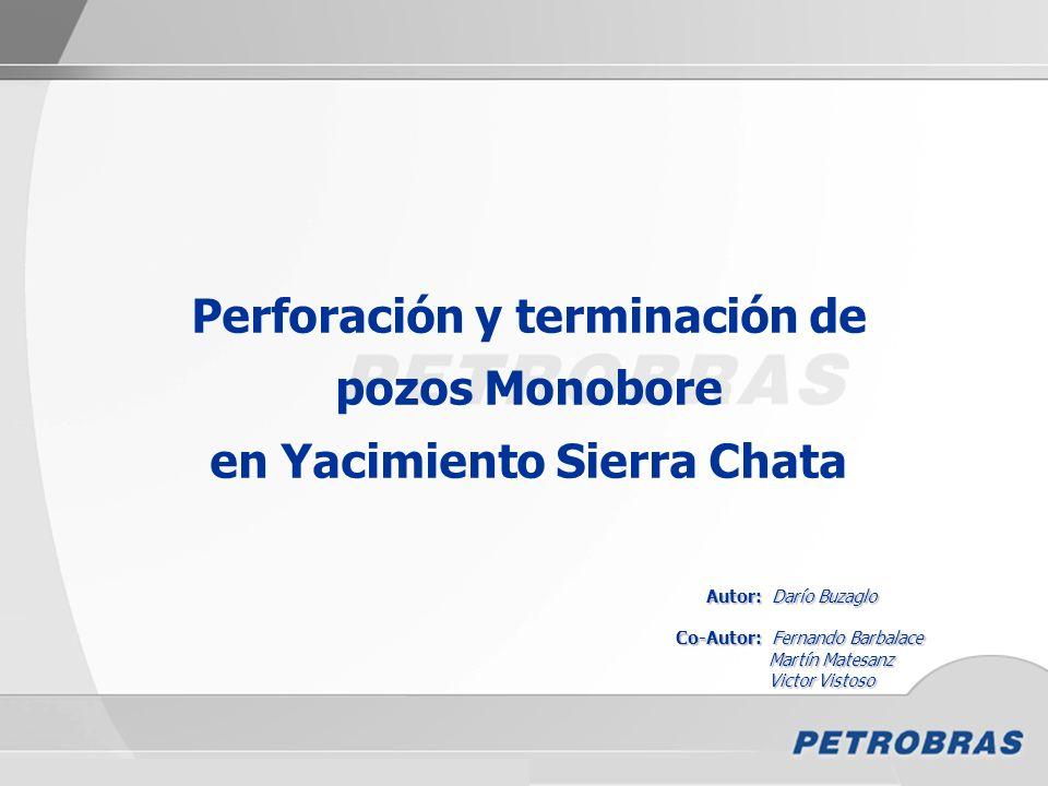 Jornadas de Perforación, Terminación, Reparación y Servicio de Pozos – IAPG - 2010 Perforación y terminación de pozos Monobore en Yacimiento Sierra Ch