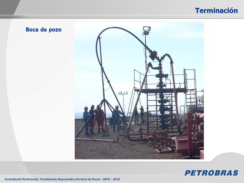 Jornadas de Perforación, Terminación, Reparación y Servicio de Pozos – IAPG - 2010 Boca de pozo Terminación