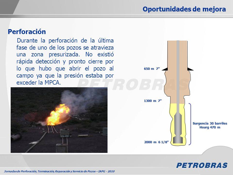 Jornadas de Perforación, Terminación, Reparación y Servicio de Pozos – IAPG - 2010 Oportunidades de mejora Perforación Durante la perforación de la úl