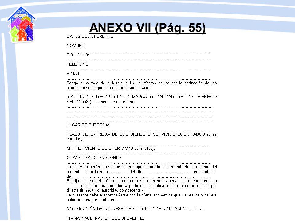 ANEXO VI (Pág. 54)