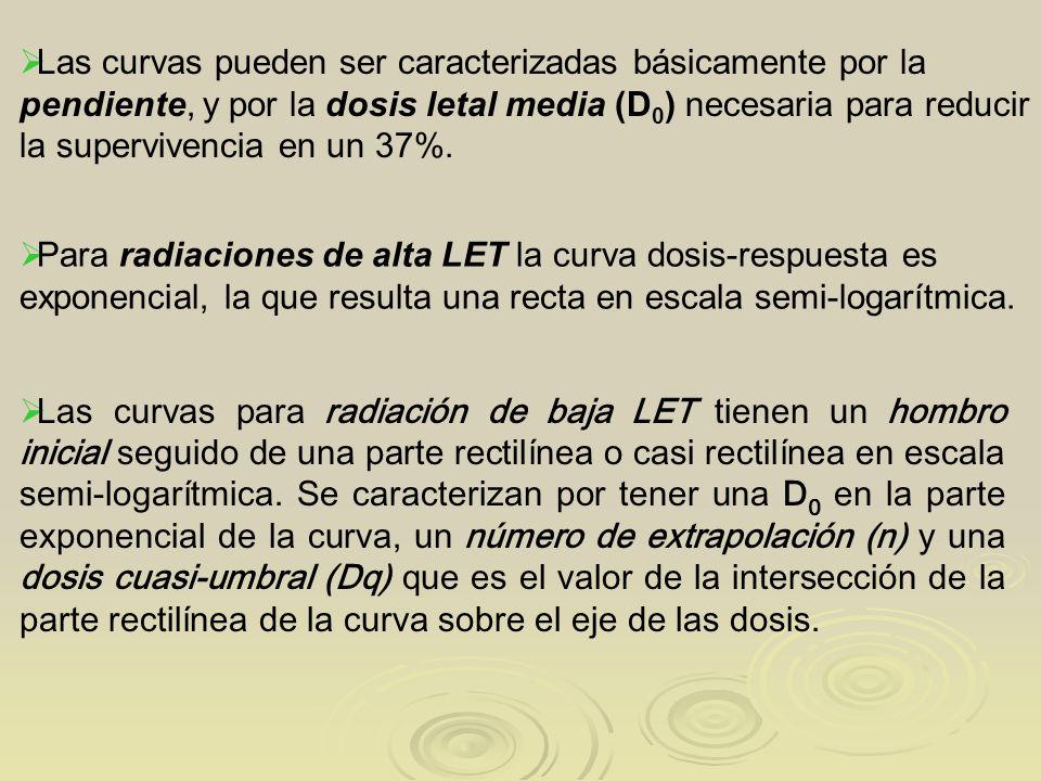 Las curvas para radiación de baja LET tienen un hombro inicial seguido de una parte rectilínea o casi rectilínea en escala semi-logarítmica. Se caract