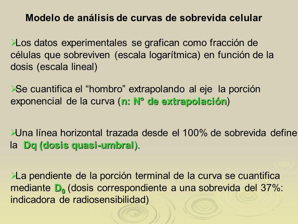 D 0 La pendiente de la porción terminal de la curva se cuantifica mediante D 0 (dosis correspondiente a una sobrevida del 37%: indicadora de radiosens