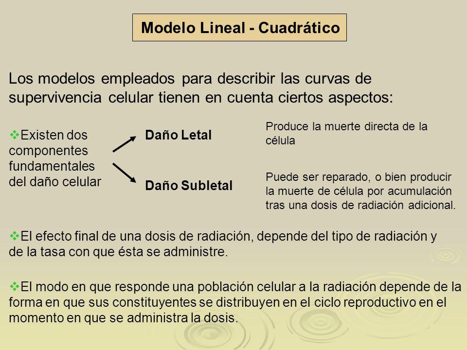 Modelo Lineal - Cuadrático Los modelos empleados para describir las curvas de supervivencia celular tienen en cuenta ciertos aspectos: Existen dos com