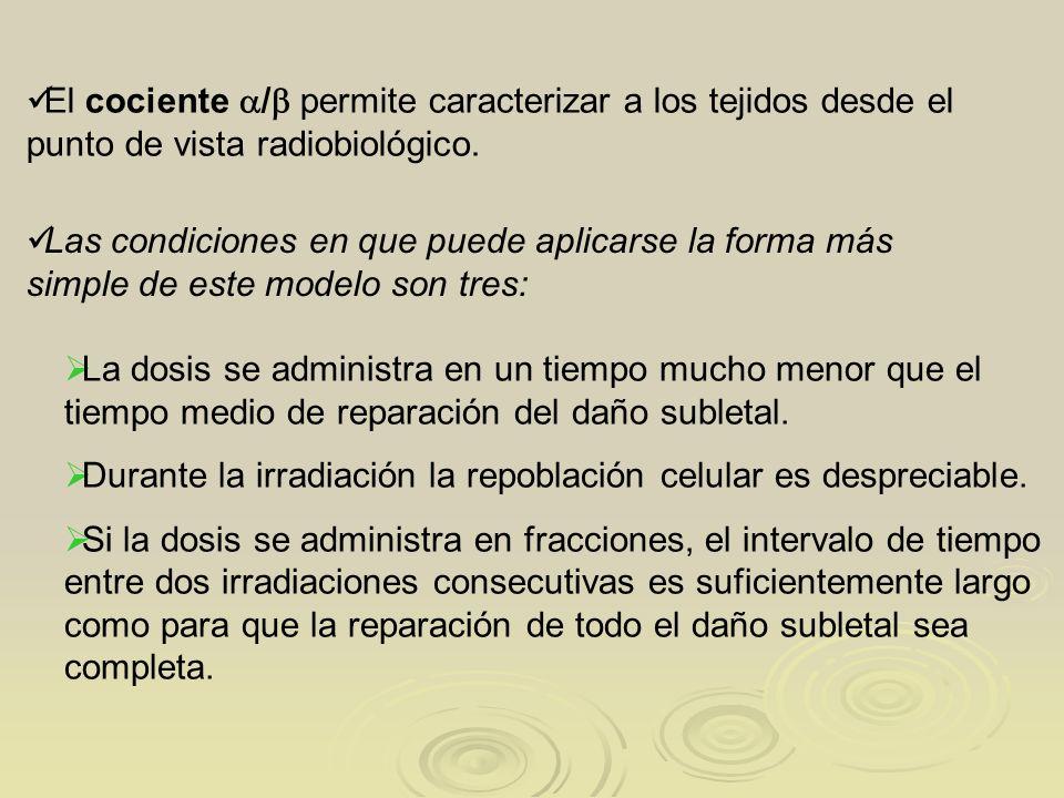 El cociente / permite caracterizar a los tejidos desde el punto de vista radiobiológico. Las condiciones en que puede aplicarse la forma más simple de
