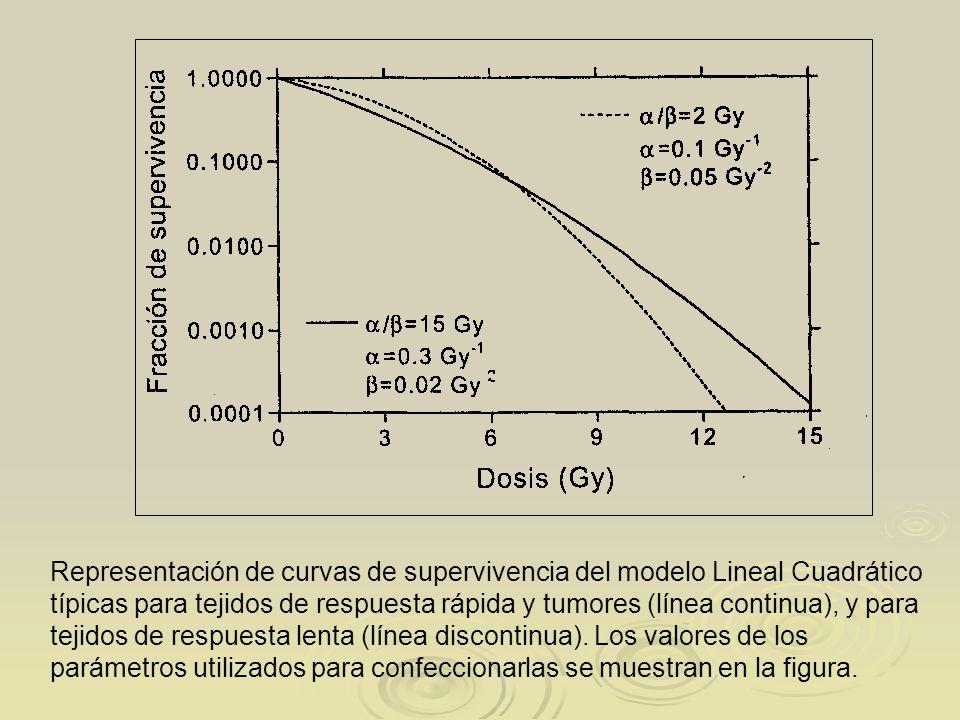 Representación de curvas de supervivencia del modelo Lineal Cuadrático típicas para tejidos de respuesta rápida y tumores (línea continua), y para tej