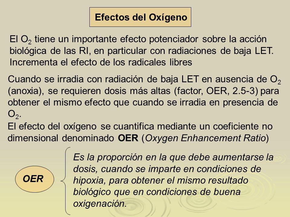Efectos del Oxígeno El O 2 tiene un importante efecto potenciador sobre la acción biológica de las RI, en particular con radiaciones de baja LET. Incr