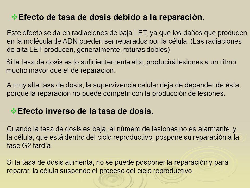 Efecto de tasa de dosis debido a la reparación. Este efecto se da en radiaciones de baja LET, ya que los daños que producen en la molécula de ADN pued