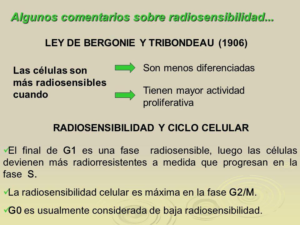 El final de G1 es una fase radiosensible, luego las células devienen más radiorresistentes a medida que progresan en la fase S. La radiosensibilidad c